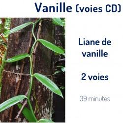 Vanille 2 voies (CD)
