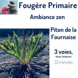 Fougère Primaire au Piton...