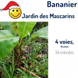 Jardin des Mascarins :...