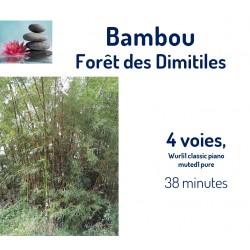 Forêt des Dimitiles Bambou