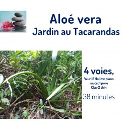 Jardin au Tacarandas  Aloé...